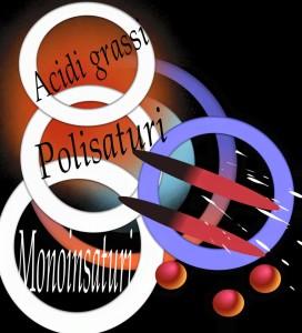 acidi-grassi-272x300