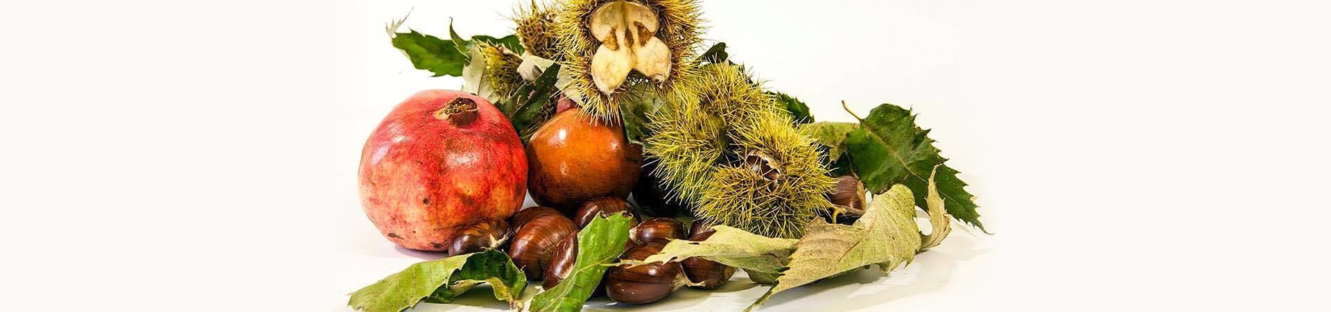 natura morta - giovanna pitotti biologo nutrizionista