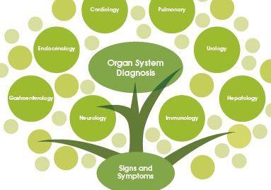 Cos'è la Medicina Funzionale?